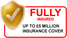 fully-insured